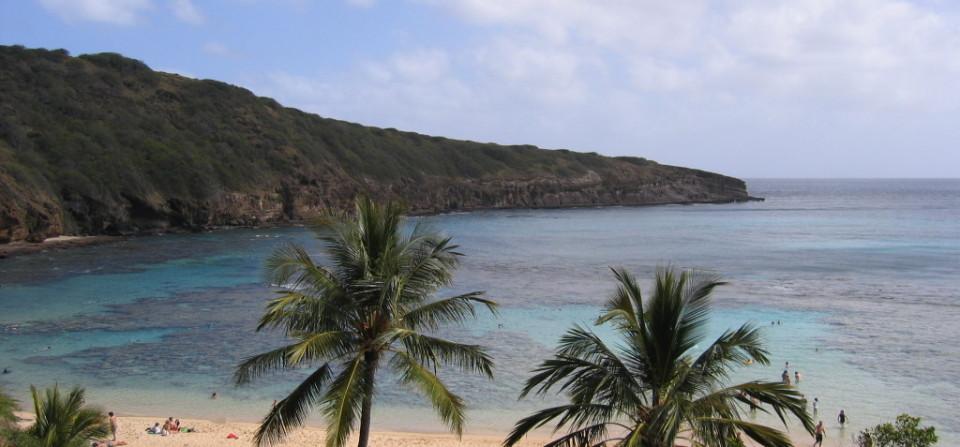 Dlaczego warto spędzić wakacje na Hawajach?